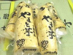 【5000円以上送料無料】大和芋〈ヤマトイモ〉1Kg前後、2?4本前後