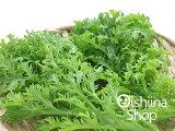 山葵菜〈ワサビナ〉1パック、50g〜100g前後