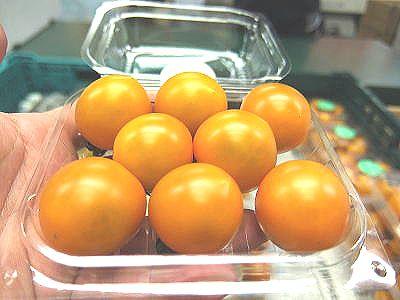 オレンジ系ミディトマト1パック、100g〜200...の商品画像