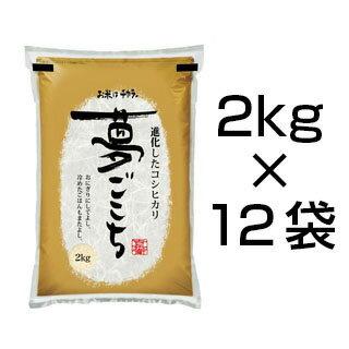 令和2年(2020年) 石川県産 夢ごこち 24kg(2kg×12袋) 白米【送料無...