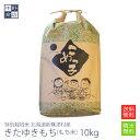 【ふるさと納税】北海道産特別栽培米「風の子もち」2kg×2・もち粉200gセット 【餅米・もち米】