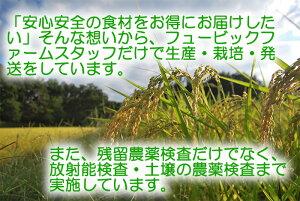 むのうやくん生米糀甘酒300g5個セット【国産】【代引き不可】