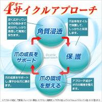 4(フォー)サイクルアプローチ