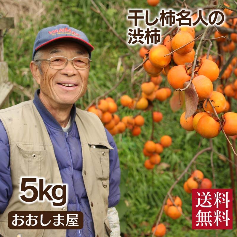 渋柿 送料無料 5kg 紅高瀬 熊本産 干し柿 渋抜き つるし柿 あんぽ柿 ご自分で干し柿を作る方へ