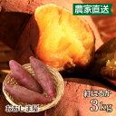 さつまいも 紅はるか 3kg 送料無料 サツマイモ べにはるか 生芋 さつま芋 唐芋 からいも 土付き 泥付き 野菜 旬 料理 レシピ 国産 熊本 大嶌屋(おおしまや)【gift】
