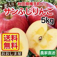 秋田県産蜜入りサンふじりんご2.5kg大小さまざま(6〜11玉前後)産地直送<11月下旬より順次出荷>