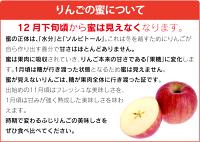 秋田県産蜜入りサンふじりんご5kg大小さまざま(12〜22玉前後)産地直送<11月下旬より順次出荷>