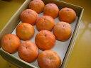 【農家より直送!】奈良西吉野産採りたて直送富有柿(33個入り・約10kg)【 家庭用 3L 】