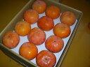 【農家より直送!】奈良西吉野産採りたて直送富有柿(24個入り・約6.5kg)【 家庭用 2L 】