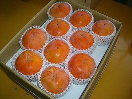 【農家より直送!】奈良西吉野産採りたて直送富有柿(7.5kg)【特秀品3L】