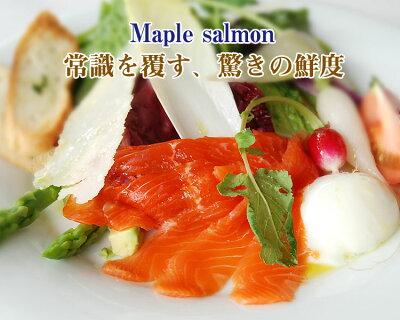 【冷蔵産地直送】西郷村の特産品鮮度バツグン、生食用/ホール 約2.5Kgメイプルサーモン