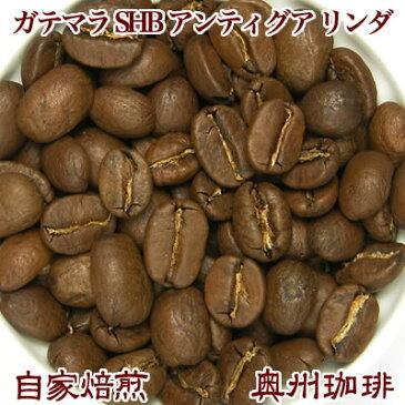 自家焙煎コーヒー豆ストレートコーヒー【ガテマラ SHB アンティグア リンダ】500g