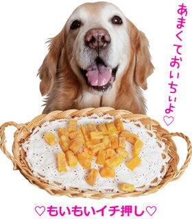 もいもい印の国産ソフトな焼いも【犬のおやつ】<あす楽対応>