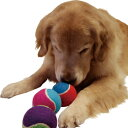 ちょっと大きなテニスボール(3ヶセット)【犬用おもちゃ】<あす楽対応>