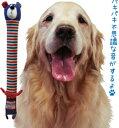 パキパキネッククマさん【犬用おもちゃ】<あす楽対応>