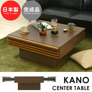 カーノセンターテーブル(1個口/11才)