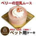 ペットケーキ コミフ ベリーの豆乳ムース 誕生日ケーキ バースデーケーキ ペット用ケーキ ワンちゃん用 犬用 1