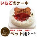 大人気(コミフ) 誕生日ケーキ バースデーケーキ ワンちゃん用 犬用 ワンちゃん用 コミフ いちごのバースデーケーキ ペットケーキ 送料無料(※一部地域除く)