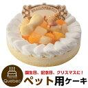 ペットケーキ 誕生日ケーキ レアチーズ 記念日ケーキ 犬猫兼用 ペット用ケーキ ペットライブラリー