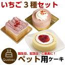 大人気(コミフ) 誕生日ケーキ ワンちゃん用 犬用 ワンちゃん用 コミフ いちごケーキ 3種類セット ペットケーキ