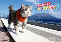 野良猫ヒーロー ニャン吉が行く! かぎしっぽのアイドル猫「ニャン吉」感動の写真集-【電子書籍】