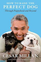 How to Raise the Perfect DogThrough Puppyhood and Beyond-【電子書籍】