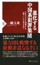 進化する中国系犯罪集団日本のカネを強奪する「龍グレ」の正体を追う-【電子書籍】