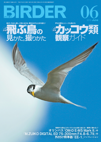 【はじめての方限定!一冊無料クーポンもれなくプレゼント】BIRDER2015年6月号【電子書籍】[ BI...