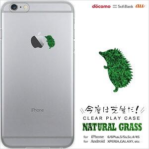 Apple Watch(アップル ウォッチ)発表記念SALE!メール便送料無料!iPhone6 ケース クリア ハ...