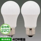 アイリスオーヤマ LDA4N-G-4T52P LED電球 一般電球形 40W相当 昼白色相当 広配光 2個パック