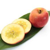 ご予約青森県産幻のりんご究極の蜜入リンゴこみつ林檎約2kg
