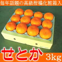 柑橘のニューフェイス!毎年話題の高級柑橘【せとか】しかも大玉!3kg化粧箱入