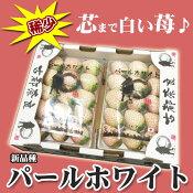 ご予約奈良県産白いちご白苺パールホワイト2パック