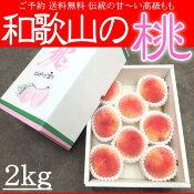 お中元和歌山の桃もも2kg化粧箱送料無料ご予約