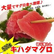 訳ありキハダマグロ(鮪まぐろ)赤身切落し500g大量で食べ放題