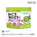 仙台ネクステージ MCT ホエイプロテイン スリム & ビューティー 抹茶味 300g 中鎖脂肪酸 100% プロテイン乳酸 鉄 鉄分 コラーゲン ダイエット 美容 mctオイル ホエイ