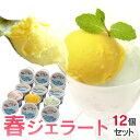 春のジェラート12個セット【送料無料/のし】しまなみドルチェ/アイスクリーム/ジェラート お取り寄せ