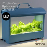 Akarina05(ブルー)LED水耕栽培器