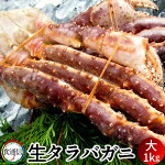 たらばがに生たらばがに足大1kgタラバガニ脚肉生本たらば蟹足