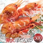 ボタンエビボタン海老お刺身ぼたんえび[特大・500g]新鮮北海道大型牡丹海老格安産直
