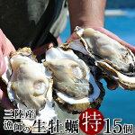 生牡蠣殻付き特大夢牡蠣15個生食用生ガキ大粒生牡蠣特大バーベキュー