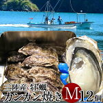 牡蠣カンカン焼きセット生ガキM12個入生食用宮城県産生牡蠣缶付きガンガン焼き