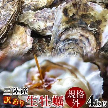 牡蠣 訳あり [規格外] 4kg 加熱用 殻付き牡蛎 漁師直送 カキ 生かき 三陸 宮城県産【送料無料】