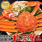 かに松葉ガニ[中]550g松葉蟹ボイルゆでがに鳥取県産ブランドタグ付きマツバガニ日本海ズワイガニ
