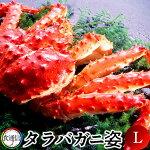 たらばがにボイルたらばがに姿1尾(1.5〜1.8kg)Lタラバガニ本たらば蟹姿