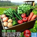 日本の有機野菜セット 旬のおまかせ9種類 全国ご当地生産者のこだわり有機栽培 ベジタブル スムージー 野菜材料【送料無料】[お中元 ギフト]