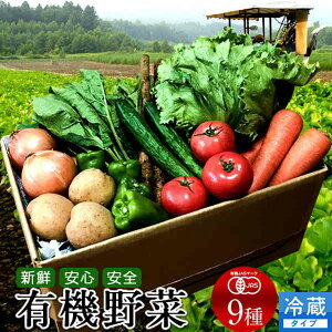 日本の有機野菜セット 旬のおまかせ9種類 全国ご当地生産者のこだわり有機栽培 ベジタブル スムージー 野菜材料【送料無料】
