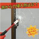ガラス 飛散 防止 防犯 フィルム 透明ガラス用(350×4...