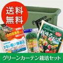 今年も販売します!!種付きの緑のカーテンの栽培セット!他店のセットとは【培養土が違う】いっ...