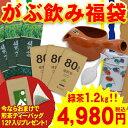 福袋 お茶 【送料無料】 緑茶 詰め合せ 『がぶ飲み福袋』 ...
